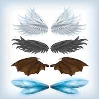 A set of wing designs