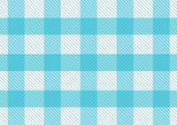 Blue pattern picnic tablecloth
