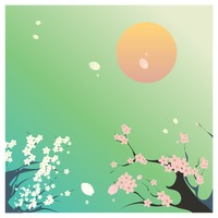 Cherry blossom and sun