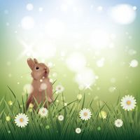 Cute bunny in the garden with flowers