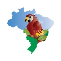 Double exposure of brazil map with macaw