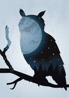 Double exposure owl and night sky