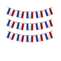 France flag buntings