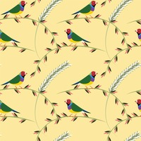 Gouldian finch on branches