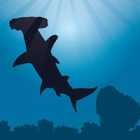 Great hammerhead shark silhouette