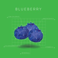 Infographic of blueberry