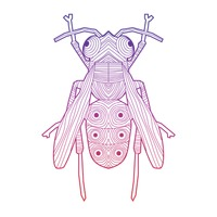 Intricate house fly design