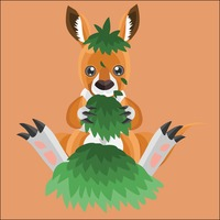 Kangaroo playing with grass on peach background