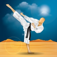 Man practising karate