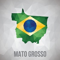 Mato grosso state map