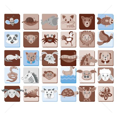 Cute : A collection of animals