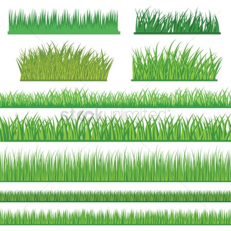 Background : A set of grass rows