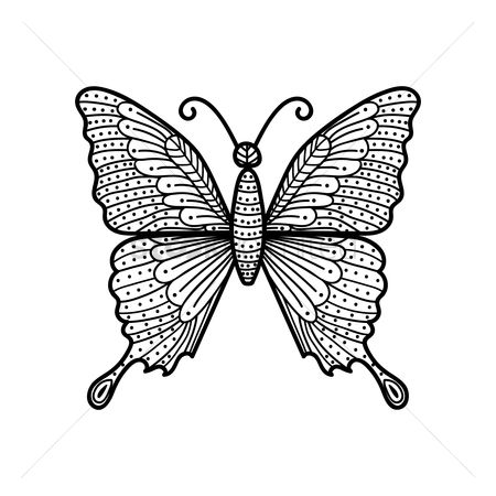 Animal : Butterfly monochrome design