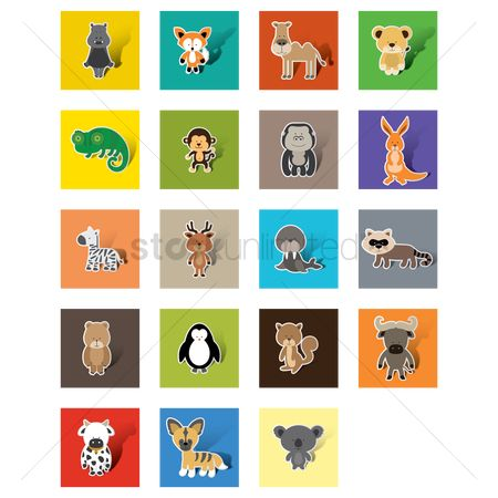 Cute : Collection of animals