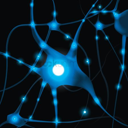 Vectors : Neurons