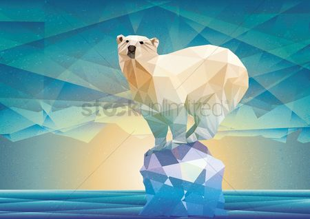 Animal : Polar bear standing on an iceberg