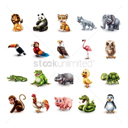 Animal : Set of cartoon animals