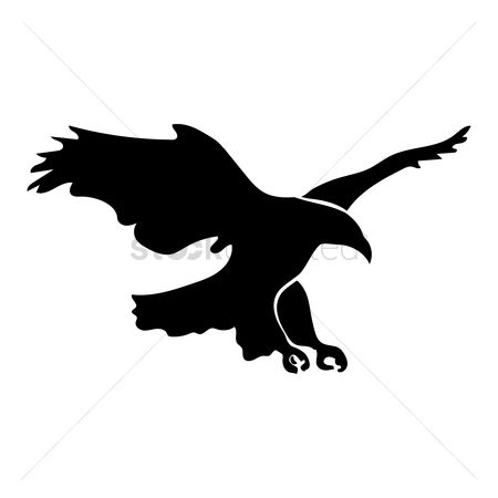 Birds : Silhouette of eagle