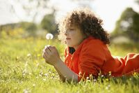 Boy playing with dandelion
