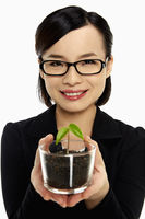 Businesswoman holding up a potted plant