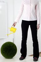 Businesswoman watering a round plant