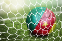 Cameroon soccer ball in goal net