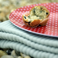 Muffin on folded picnic blanket