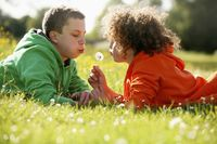 Two boys lying on the grass blowing dandelion