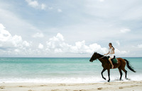 Woman riding a horse on the beach