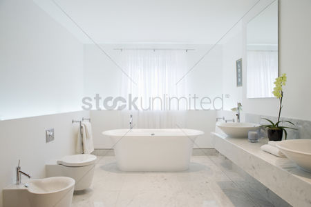 Interior : Bathroom