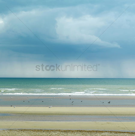 Environment : Camber sands