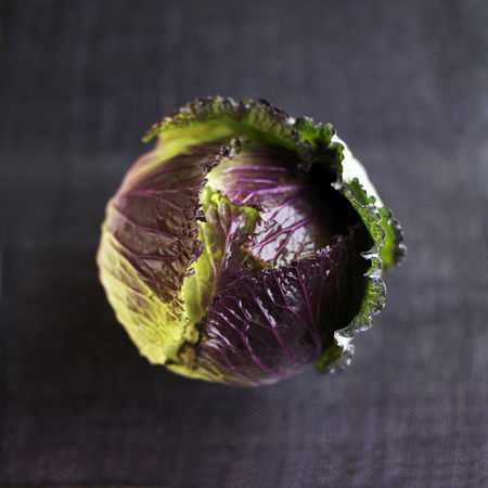 Food : High angle close up of a cabbage