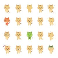 Collection of expressive cat