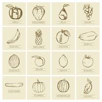 Collection of fruits and vegetables icons