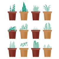 Collection of potted green plants