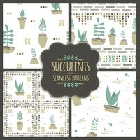 Popular : Collection of seamless succulent designs