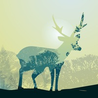 Double exposure deer and forest
