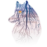 Double exposure of wolf and nature