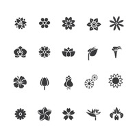 Popular : Set of floral icons
