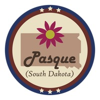 South dakota state with pasque flower