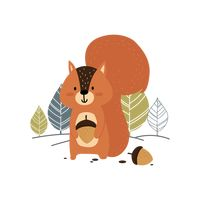 Popular : Squirrel holding an acorn