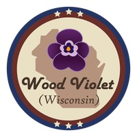 Wisconsin state with wood violet flower