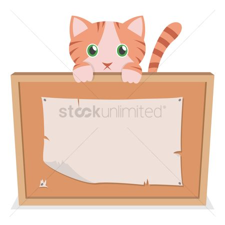 Pins : A cat holding a cork board