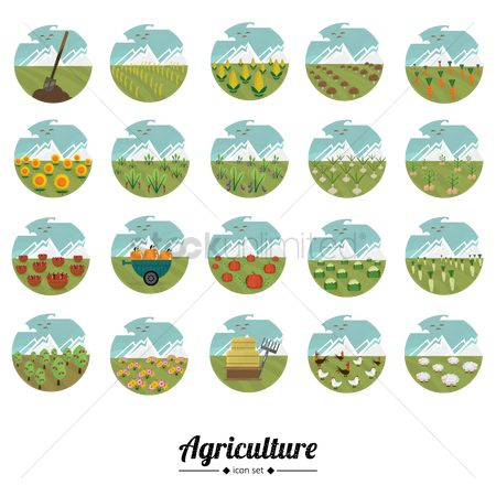 Agriculture : A collection of agriculture icons