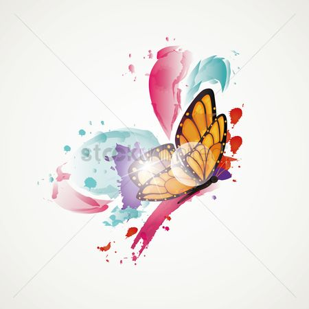 Multicolor : Abstract butterfly
