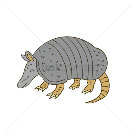 Claws : Armadillo