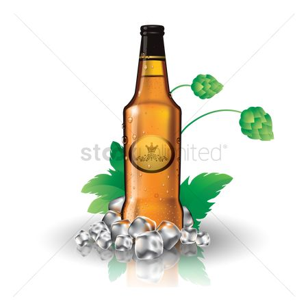 Alcohols : Beer bottle