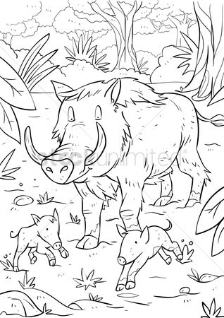Drawings : Boar with piglets