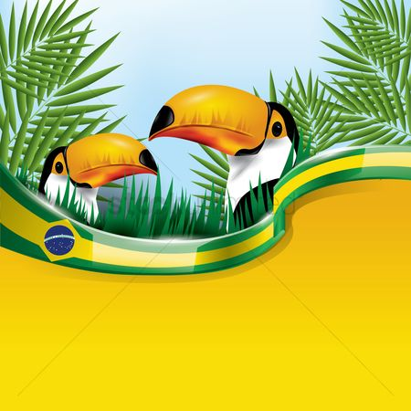 Grass background : Brazil flag with toco toucan