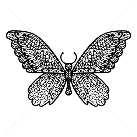 Linear : Butterfly monochrome design